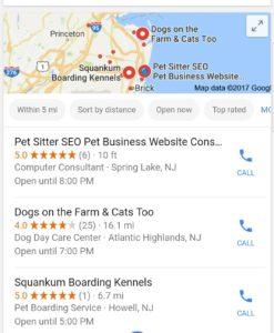 Pet Sitter SEO GMB listing