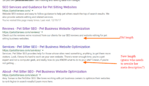 Example of extended meta description in search results